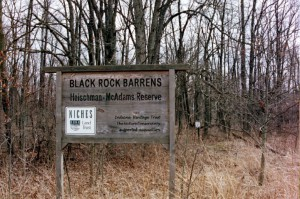 black-rock-barrens-sign2